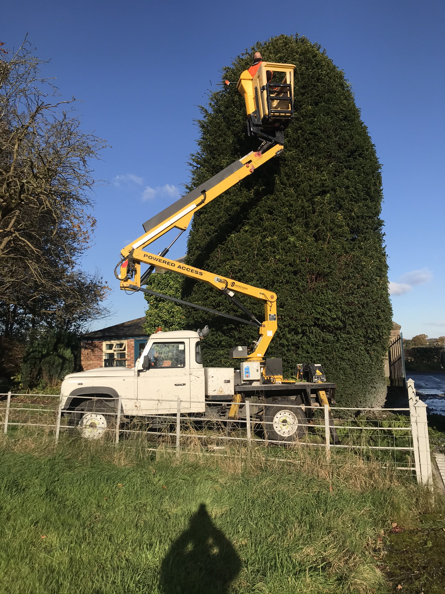 Image of HIGH ACCESS CHERRY PICKER. From Yeomans Access and Arb